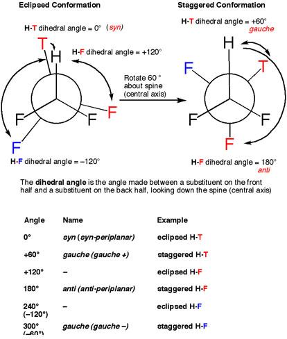 5-synantigauche copy