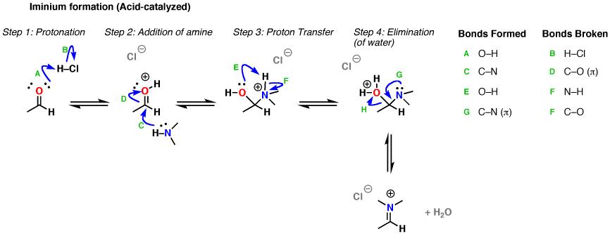 3-mech-2-iminium