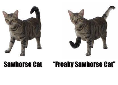 3-freaky-sawhorse